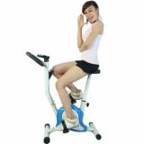 Xe đạp tập Elip 2014 xanh