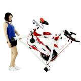 Xe đạp tập Elip L008
