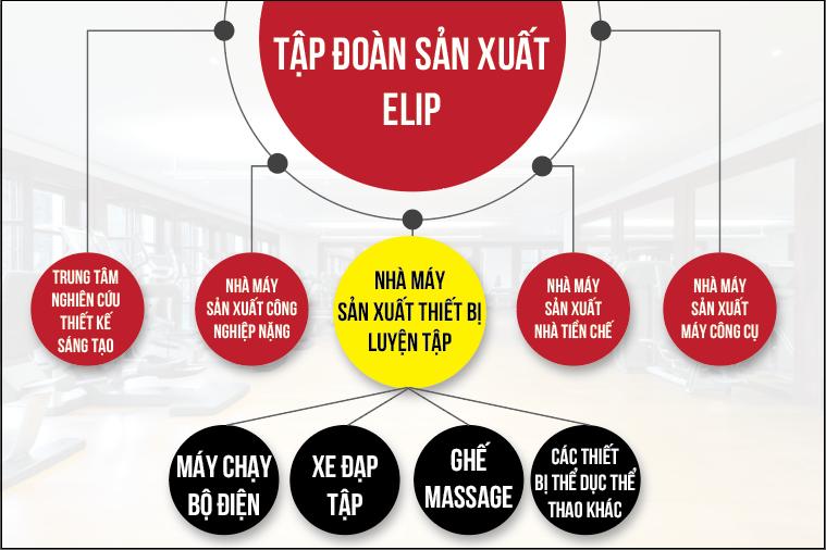 CEO Elipsport: Sức khoẻ cho mỗi người Việt là mục tiêu của cuộc đời tôi - ảnh 3