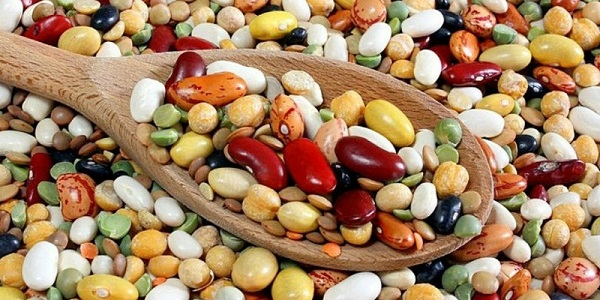 Các loại đậu chứa vitamin và khoáng chất dồi dào