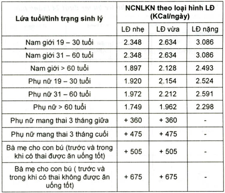 luong-calo-can-thiet-moi-ngay-cho-co-the