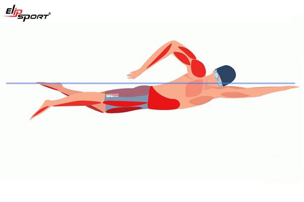 bơi ếch có giảm cân không