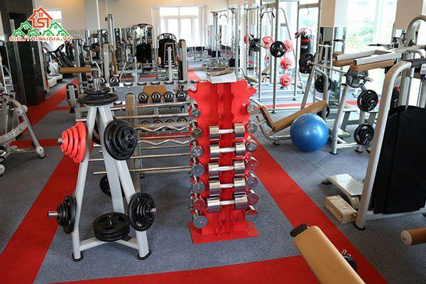 Cửa hàng bán dụng cụ thiết bị ghế tập gym tại Tp Vũng Tàu