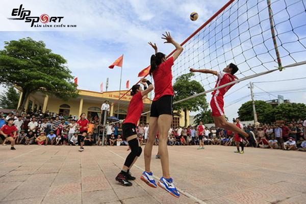 Địa Chỉ Cho Thuê Sân Bóng Chuyền Ở Hồ Chí Minh