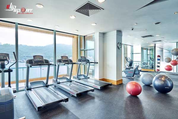 phòng tập gym Quận 12, Hồ Chí Minh