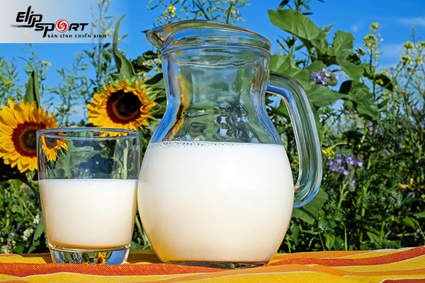 Sữa tươi tách béo không đường