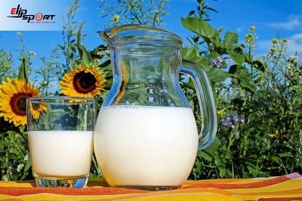 Tác dụng của sữa tươi không đường