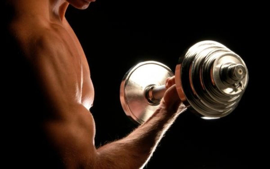 làm thế nào để tăng cơ