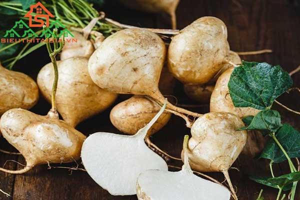 giảm cân bằng củ đậu