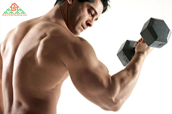 Rep trong Gym là gì? Tổng hợp các thuật ngữ trong Gym