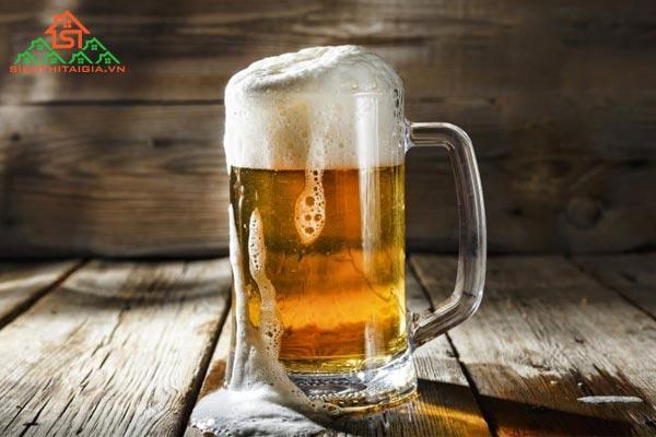 gội đầu bằng bia