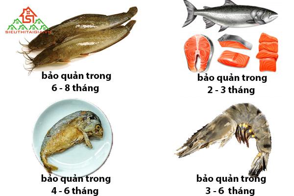 thịt cá để ngăn đá được bao lâu