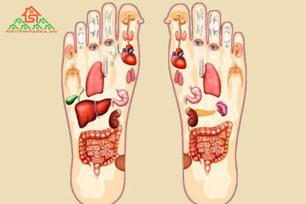 cách massage chân