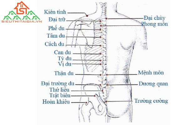 Cách massage lưng giúp thư giãn và giảm áp lực cột sống - ảnh 2