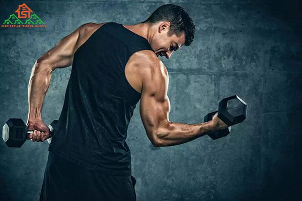 có nên tập gym mỗi ngày