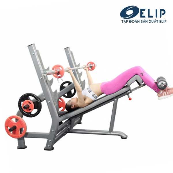 Ghế đẩy ngực dưới Elip YL29 New