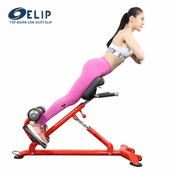 Ghế tập lưng Elip YL33