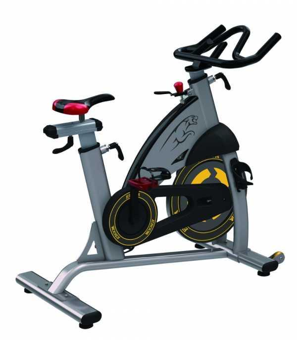 Xe đạp tập gym Elip CA09