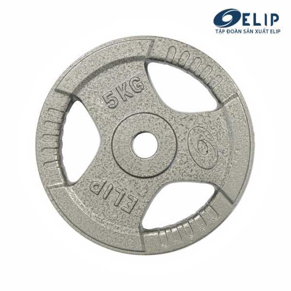 Ảnh sản phẩm Tạ Gang Elip Rubic Phi 28-5Kg