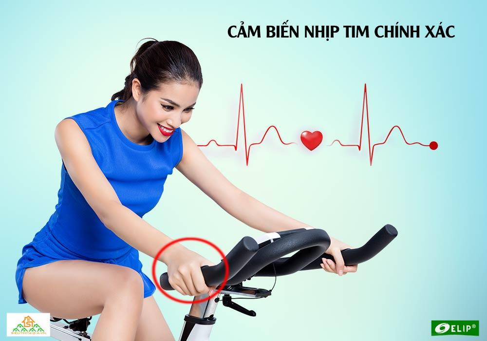 Xe đạp tập Elip Cleopat cảm biến nhịp tim