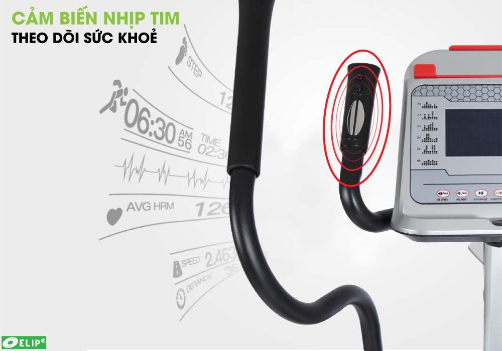Xe đạp tập Elip Everest cảm biến nhịp tim