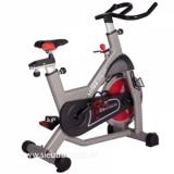 Xe đạp tập gym Elip CA08
