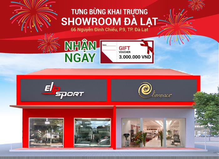 Khai trương 3 showroom Elip, dẫn đầu về số lượng 121 showroom trên toàn quốc - ảnh 3