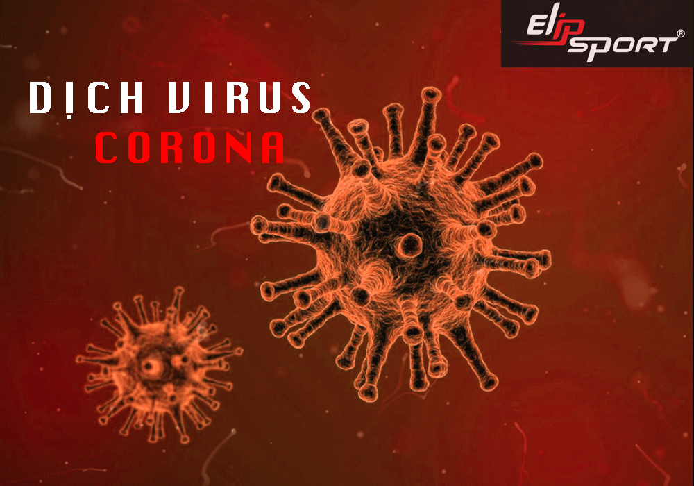 CEO Elipsport: Kêu Gọi Người Dân Tăng Cường Sức Đề Kháng Chống Chọi  Virus Corona Bằng Cách Tập Thể Dục Tại Nhà - ảnh 1
